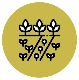 Введение в эксплуатацию лого