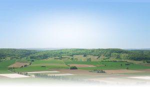 Аграрне поле